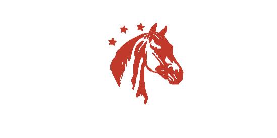 HIPICA-PONY CLUB